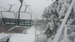 Wild Mountain Snow
