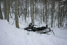 flickr_snowmobile-stock-photo-winter-tree