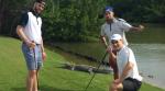 Wild about alligators