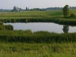 flickr_farm-water-pond