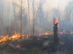 hoyt-lakes-forest-fire-may-2016