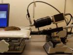 University alzheimer's mice test