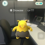 drowzee-pokemong-square