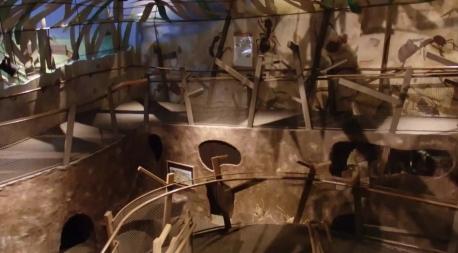 anthill-childrens-museum-video-screengrab