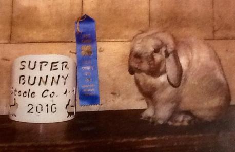 Smokey super bunny