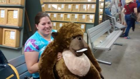 gorilla in ag building